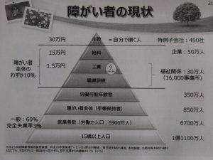 社長自作のグラフです!